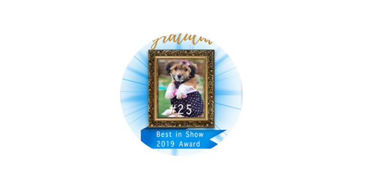 Proteus Cares Pet Award